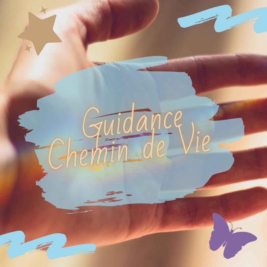 Guidance Chemin de Vie 1H30