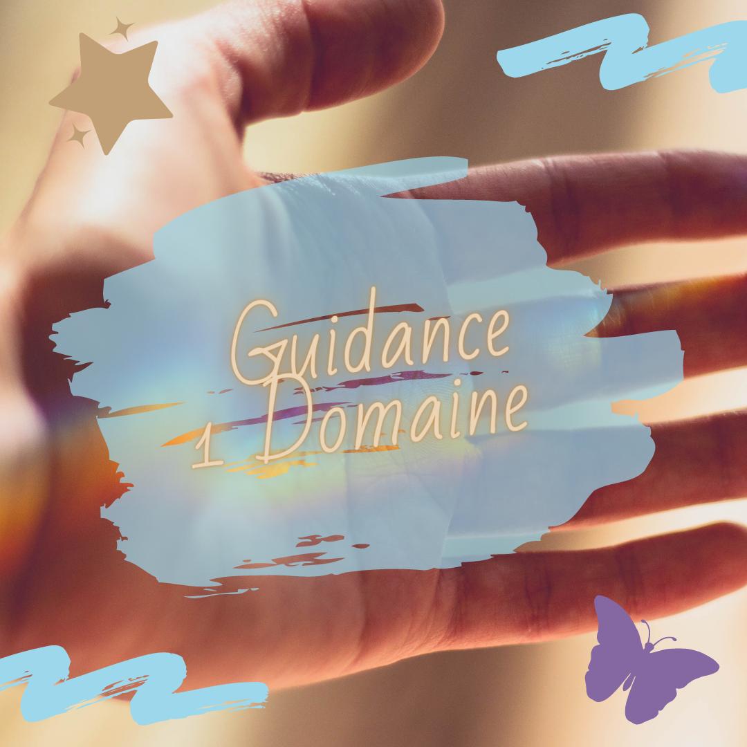 Guidance 1 Domaine 30 MIN