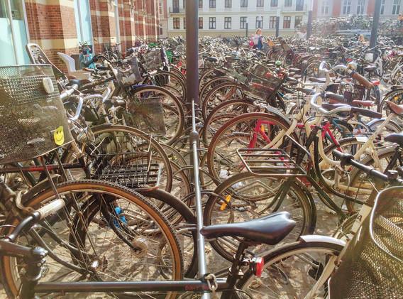Copenhagen Bikes.jpeg