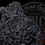 Thumbnail: MANDARIN QUESO 27.7% | EXOTIC HEADSTASH | ROSEZ CO.