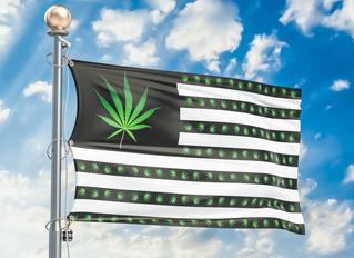 Politicians Who are For Marijuana