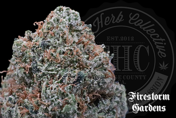 WOOKIEZ | TOP SHELF | FIRESTORM
