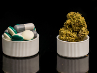 Marijuana for Pain: Top 5 Cannabis Strains for Pain Relief