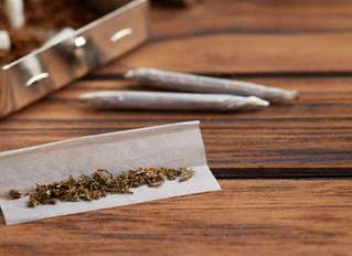 Rolling Papers: The Ultimate Guide