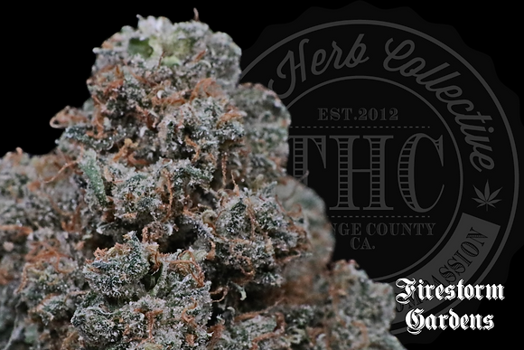 GRAPE RANCHER | CONNOISSEUR | FIRESTORM