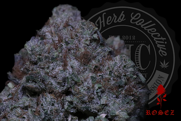 KING OF LA 26.6% | CONNOISSEUR | ROSEZ CO.