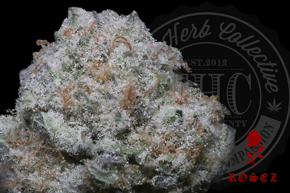 DIRTY BANANA 28.7% | EXOTIC HEADSTASH | ROSEZ CO.