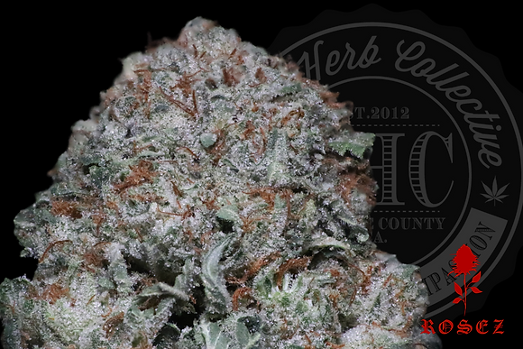 SHERBERT HAZE 26.2% | TOP SHELF | ROSEZ CO.
