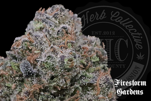 CHERRY PUNCHSICLE | CONNOISSEUR | FIRESTORM