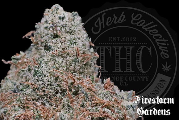 NORTHERN FIRE | TOP SHELF | FIRESTORM