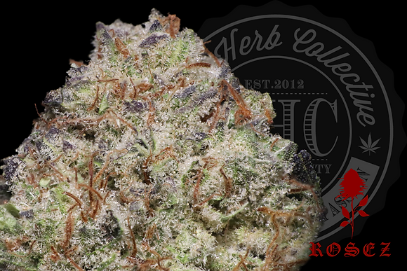 BANANA FIRE KUSH 28.4% | CONNOISSUER | ROSEZ CO.