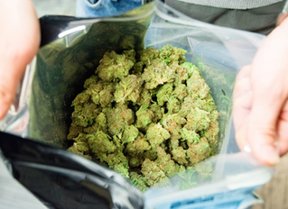 Important Facts About California Marijuana Laws