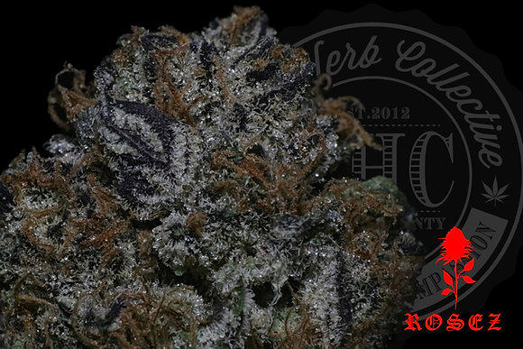 ORANGE SUNDAE 25.6% | TOP SHELF | ROSEZ CO.