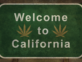 California Marijuana Laws Explained