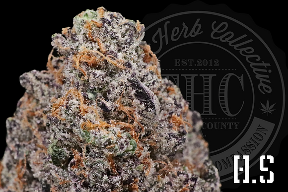 MONSTER COOKIES | CONNOISSEUR | H.S