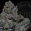 Thumbnail: GORILLA PRIVATE'S 26.8%  | HEADSTASH | ROSEZ CO.