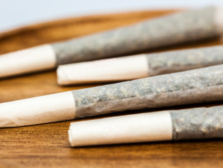 CBD Pre-Rolls Are The Future Of Cannabis: Here's Why