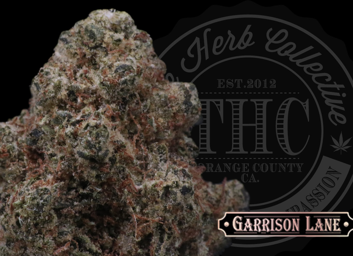 BILLY KIMBER OG | EXCLUSIVE | GARRISON LANE