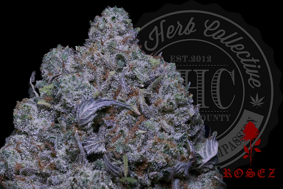 PLATINUM GORILLA 28.2% | HEADSTASH | ROSEZ CO.