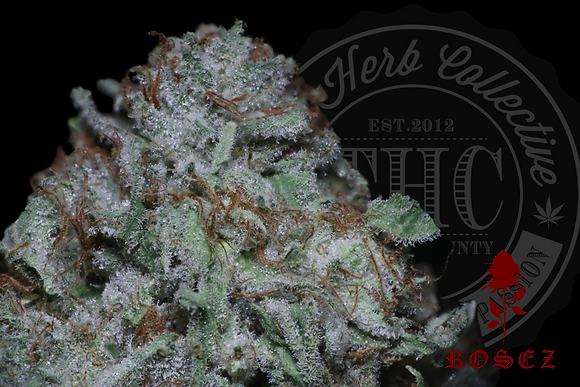 STRAWBERRY SHORTCAKE 27.6% | CONNOISSUER | ROSEZ CO.