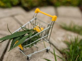 Is it Safe to Buy Weed Online