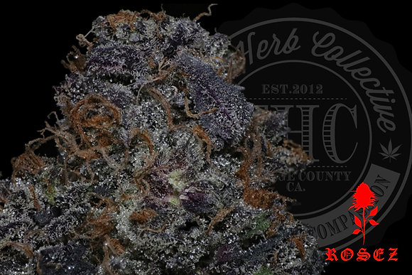 JELLY BELLY 24.8% | TOP SHELF  | ROSEZ CO.