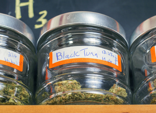 What to Know Before You Visit a Dispensary