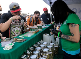 Best Cannabis Festivals In California