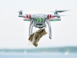Marijuana Drove Delivery