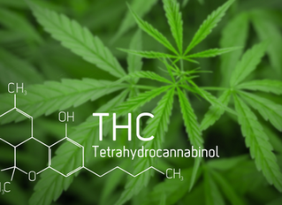 THCA vs. THC: What's the Difference