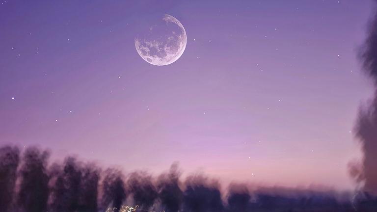 August Full Moon Breathwork Healing Journey