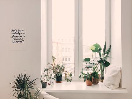 Conecta con tus ideas desde casa