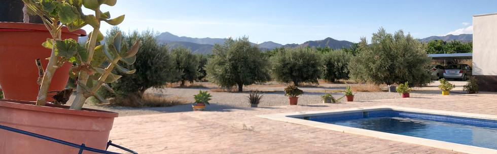 Vivienda en Mahoya. Casa entre olivos en Abanilla. Solarium