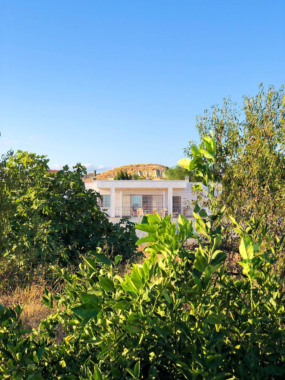 Fotografía de la Casa Entre Olivos de Mahoya en Abanilla, Murcia. Imagen exterior de vivienda arquitectura sostenible