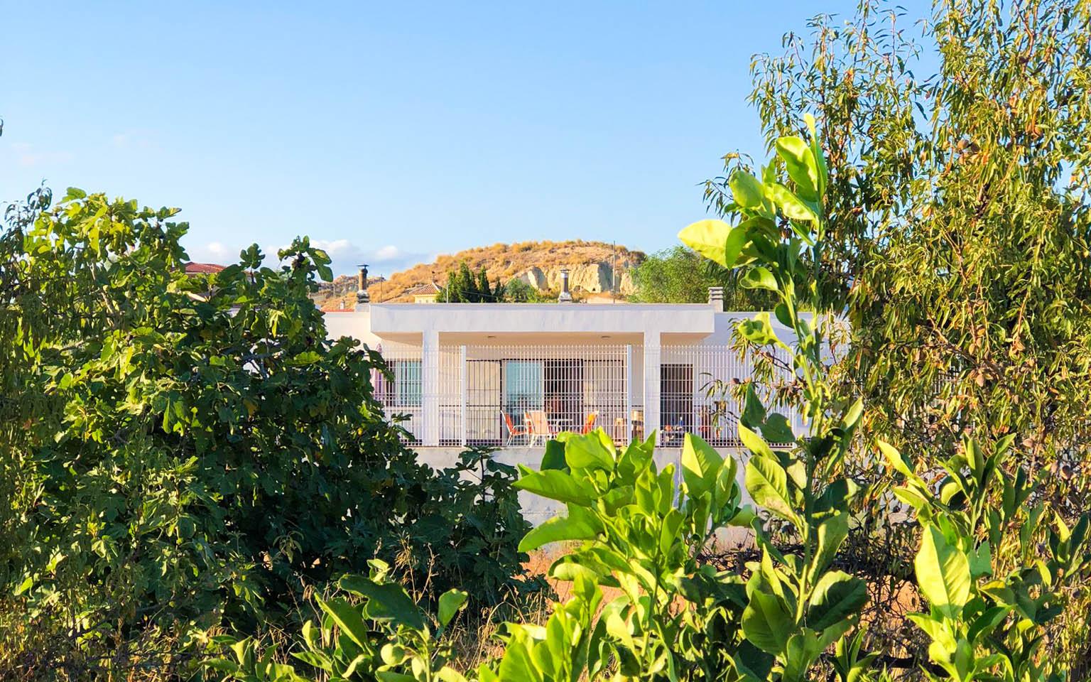 Vivienda en Mahoya. Casa entre olivos en Abanilla. Exterior vivienda arquitectura