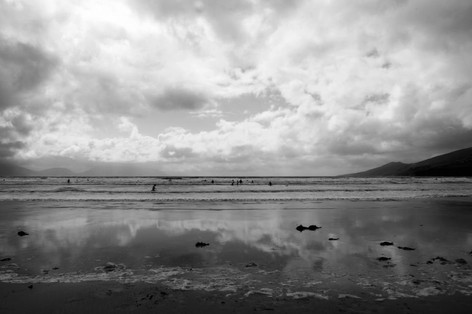 Dingle.Grey.2013