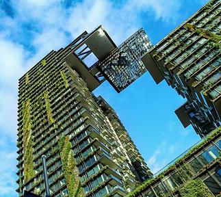 Biomimétisme Architecture Construction I