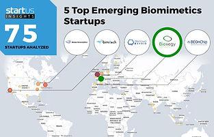 Biomimétisme Top 5 Mondial Bioxegy.jpg