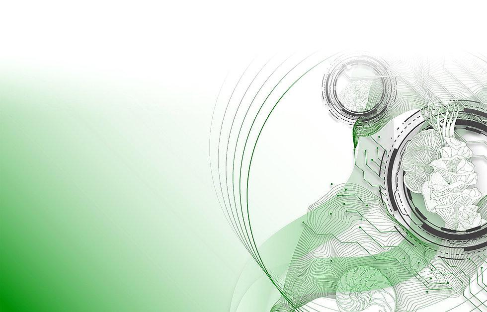 Biomimétisme.jpg