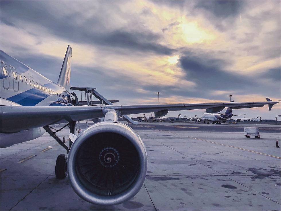 biomimétisme aéronautique.jpg