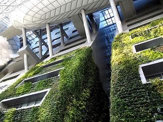 Biomimétisme Bio-inspiration Constructio