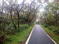 Yangmingshan National park, Taipei