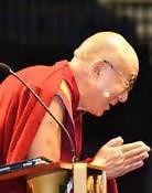 Lali Lama Bows