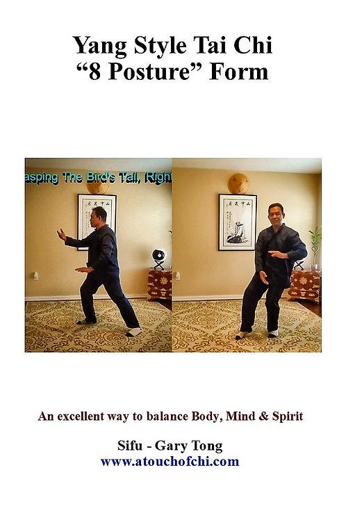 """Yang Tai Chi """"8 Posture"""" Form (DVD or USB) - Sifu Gary Tong"""