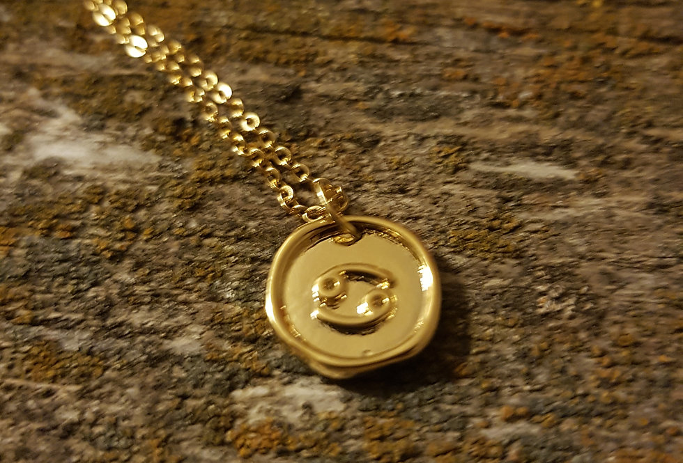Pisces wax seal necklace