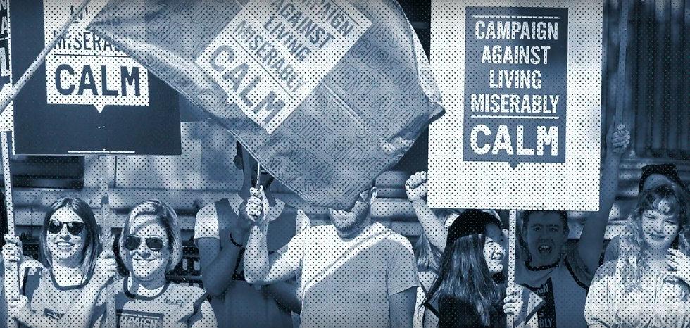 CALMZone.jpg