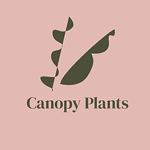 Canopy Plants logo.png