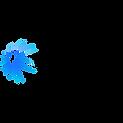 SkatePlanet logo.png