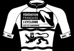 MAILLOT 47