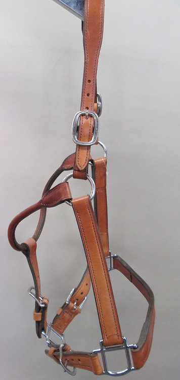 Clearance Champion Turf Halter.